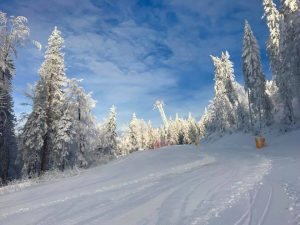Learn ski as a professional with R&J Ski School Poiana Brasov